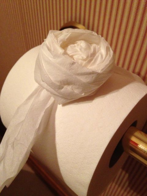 photo of home made toilet paper art