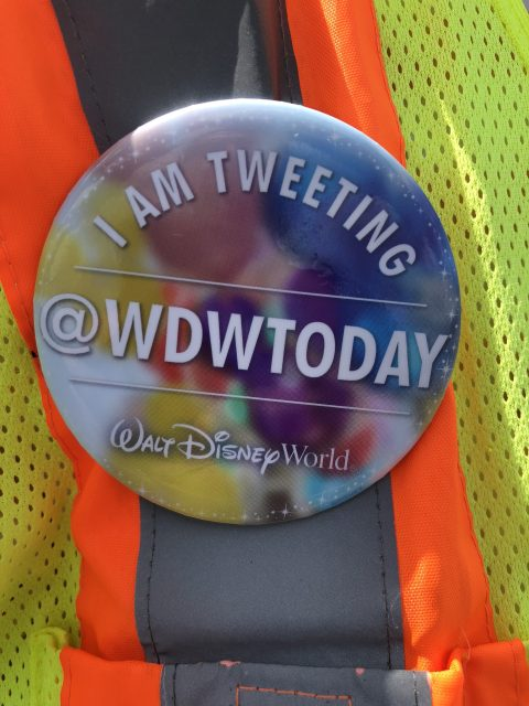 wdw today