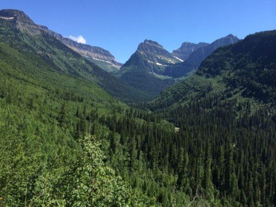 Mt Oberlin Glacier