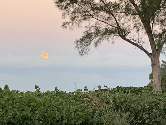 Sanibel moon set