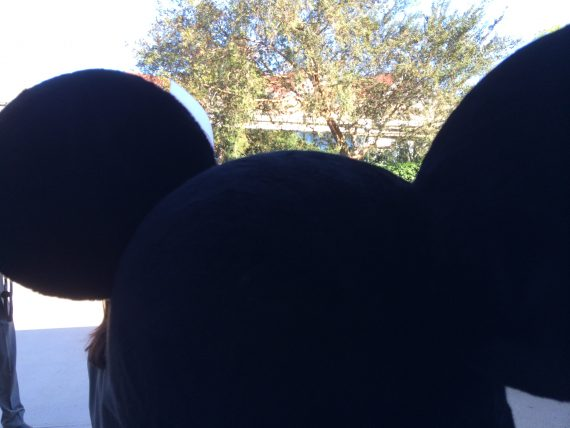 Mickey Mouse ears from behind