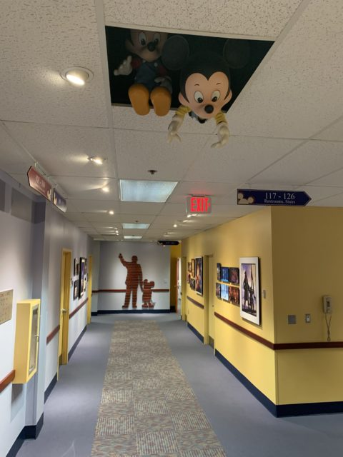 Disney Univeristy