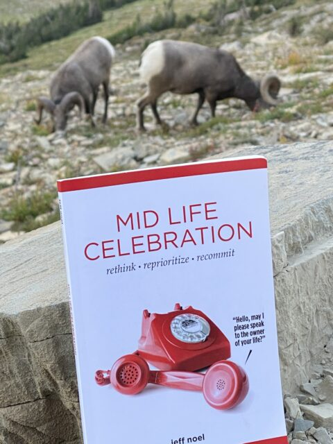 two big horn sheep ad a book on a mountainside