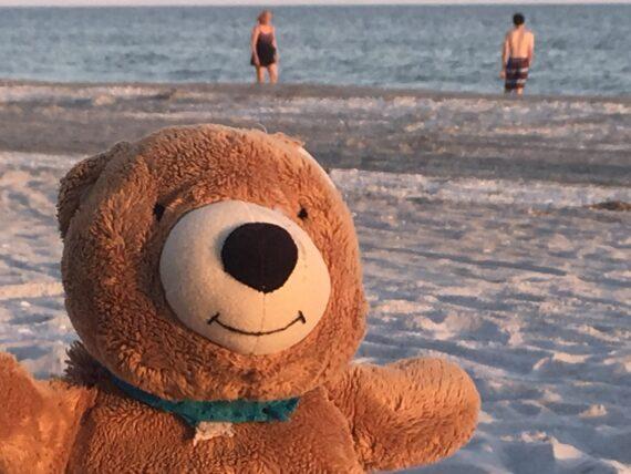 teddy bear at beach