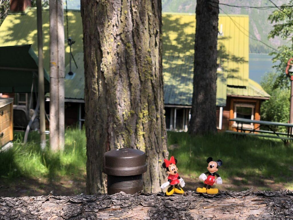 disney toys in woods